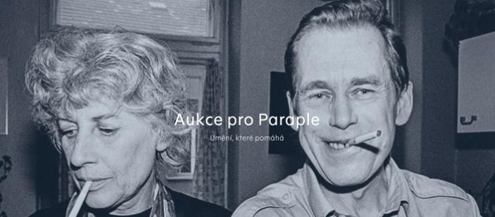 Aukce pro Paraple
