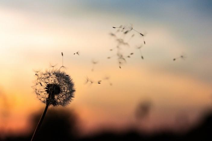 Mentální zdraví - jak nechat mysl odpočinout